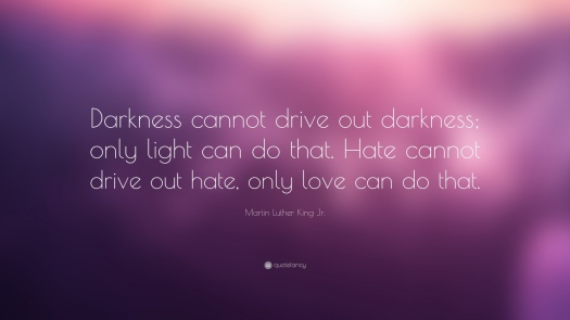 757-Martin-Luther-King-Jr-Quote-Darkness-cannot-drive-out-darkness.jpg