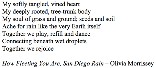 How Fleeting You Are, San Diego Rain